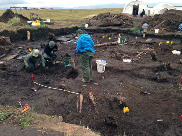 The Nunalleq archeological dig near Quinhagak in August, 2014. (Photo by Charles Enoch, KYUK - Bethel)