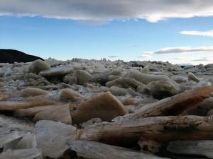Warm Weather Breaks Up Kuskokwim River