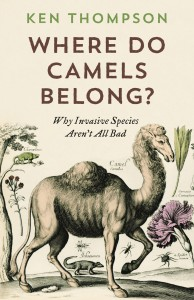 CAMELS COVER