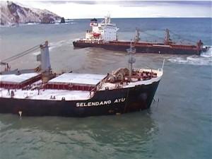 10 Years On, Selendang Ayu Spill's Legacy Still Evolving