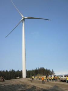 Ciri Fire Island Wind Farm