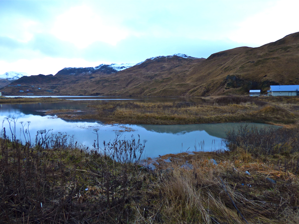 Murky water in Unalaska Lake is evidence of a runoff problem that may be harming salmon. (Annie Ropeik/KUCB)