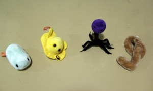 Viruses in plush form, from left to right, influenza, herpes, T4 and ebola.