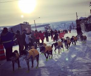 Brent Sass Extends Yukon Quest Lead