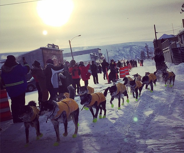 Brent Sass was the first musher to reach Dawson during the 2015 Yukon Quest. (Photo by Emily Schwing/KUAC)