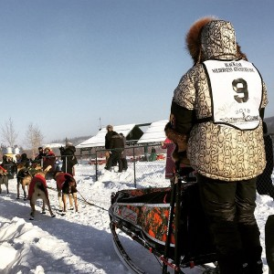 Denali Park musher Jeff King competes in the 2015 Yukon Quest. (Photo by Emily Schwing, KUAC - Fairbanks)