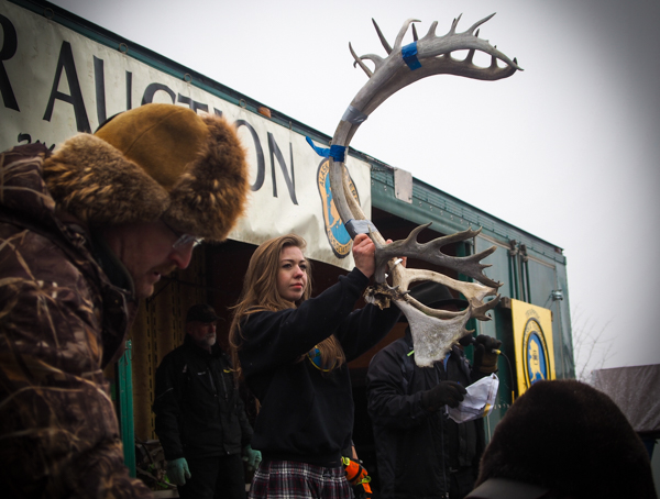 Handsome antlers sold for around $175 a pair. Auction buyers often sell raw antlers to artists to use as raw material. Smaller pieces that were cut up for easier transport were kept in plastic totes and auctioned by the pound. (Photo: Zachariah Hughes, KSKA)