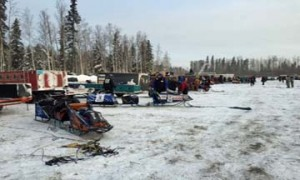 Teams prepare for the 2014 Iditarod start in Fairbanks Monday morning.  (Photo By Emily Schwing - APRN)