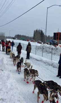 Mushers take off from Fairbanks on Monday. (Photo By Emily Schwing - APRN)