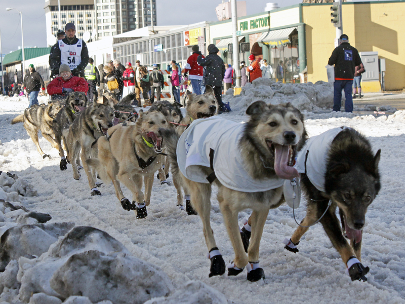 Pete Kaiser in the 2015 Iditarod ceremonial start. (Photo by Josh Edge, APRN - Anchorage)