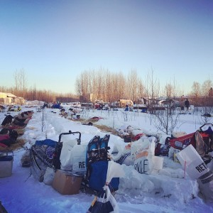 Iditarod Mushers Continue to Gamble with Rest, Long Runs and Extreme Cold