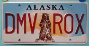 Grizzly License Plates Ready For Issue