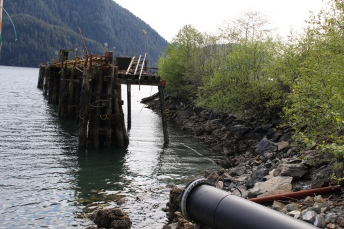 The bulk water ships are too large to dock, so the plan is to anchor them to mooring buoys in Sawmill Cove and run a floating pipeline that will carry the water from the shoreline system. (Emily Kwong/KCAW photo)