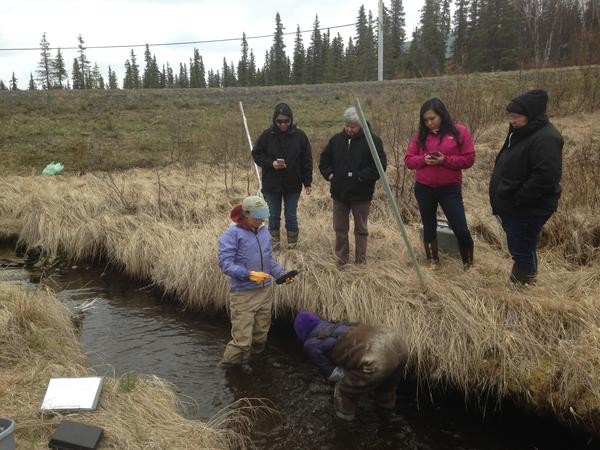 Sue Mauger, Science Director at Cook Inlet Keepers, trains IGAP Coordinators on how to check water temperature on Nielsen Creek near Dillingham. Credit Matt Martin/KDLG