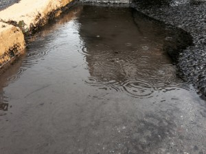 A rainy spring made for copious puddles around Petersburg. Photo: KRBD.