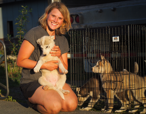 Lisbet Norris with four puppies, part of the hundred dogs her family evacuated from their Willow kennel. In total, around 400 sled dogs were brought to the lot at Underdog Feeds in Wasilla. (Photo: Zachariah Hughes, KSKA)