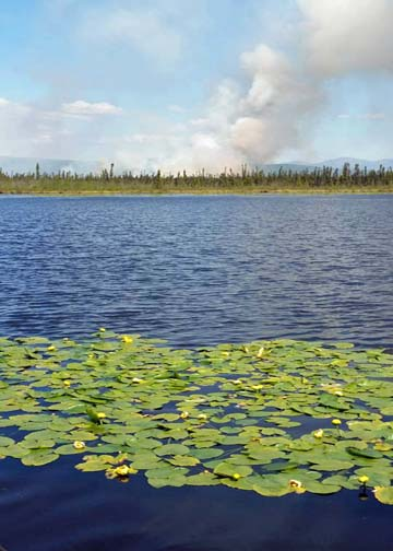 Dot Lake Fire on Monday, June 15. (Photo Courtesy of Dan Bross -KUAC, Fairbanks)