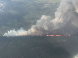 Alaska has seen record-breaking wildfire seasons in recent years. Credit: Division of Forestry. Healy fire.