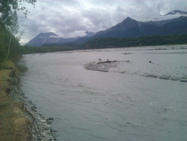 The Matanuska River swells with glacial runoff. Photo: Ellen Lockyer/KSKA.