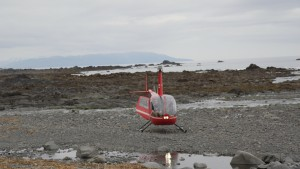 A helicopter lands on Montague Island in Prince William Sound. Photo: Hanna Craig, Alaska Public Media.