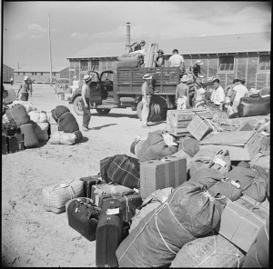 Baggage, belonging to incarcerees arriving from an assembly center at Puyallup, Washington, is sorted and trucked to barracks at the Minidoka internment camp in 1942. PHOTO: FRANCIS STEWART, U.S. DEPARTMENT OF THE INTERIOR