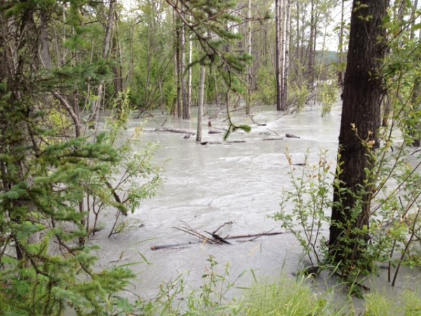 Flooding and erosion threaten private property near Sutton. Photo: Ellen Lockyer/KSKA.
