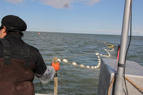 Veronica Elford helps set a net in Naknek Monday, where the fishing was slow. Credit Hannah Colton