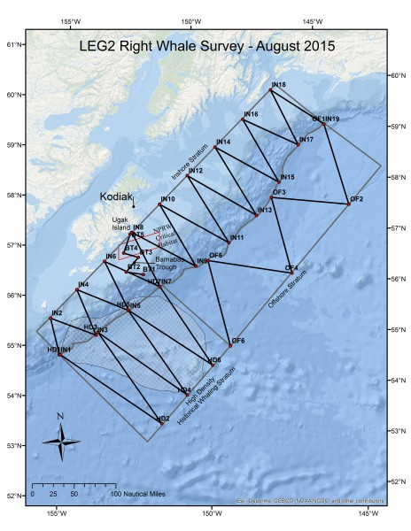 Map of NOAA's 2015 right whale survey route. Photo: NOAA.