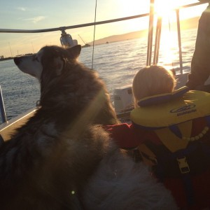 Koala and Amelia look over the bow during a sunset sail. Photo courtesy of the Bradleys.