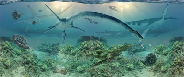 This painting of life in a Cretaceous sea by Anchorage artist James Havens depicts elasmosaurs. Photo: Museum of the North -