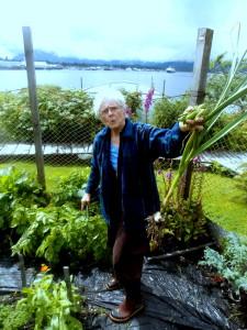 Sharon Sprague picks vegetables in her garden on Sasby Island. (Photo by Joe Sykes/KFSK)