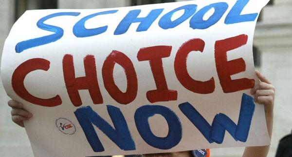 School Choice poster