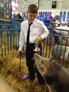 Temujin Horsey is one of the 4-H'ers with livestock in the state fair auction. Photo: Ellen Lockyer/KSKA.
