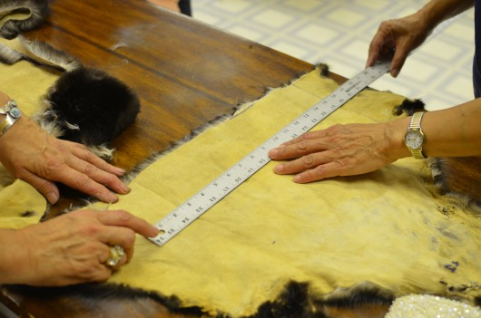 During a sea otter sewing class students measure and cut pieces of hide. Photo: Ruth Eddy/KRBD.