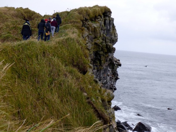 A school field trip to a sea cliff on St. Paul Island. KUCB/John Ryan photo