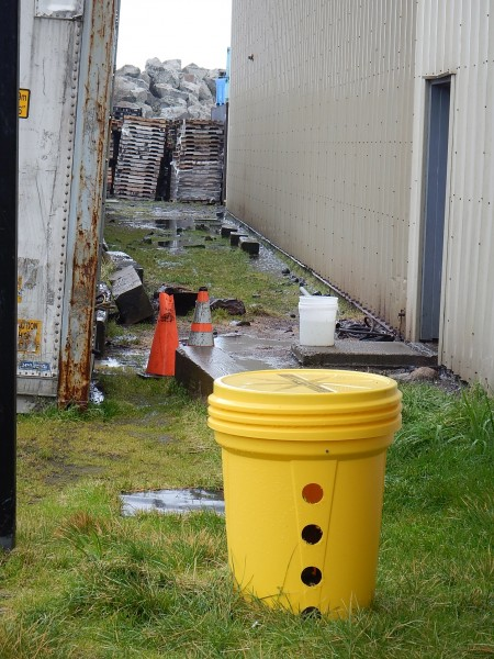 A rat trap outside the Trident Seafoods plant on St. Paul Island. KUCB/John Ryan photo.
