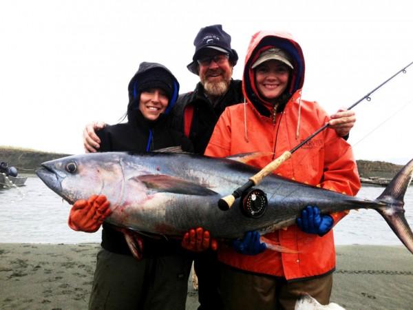 Skipjack tuna other warm water fish turn up in alaska for Warm water fish