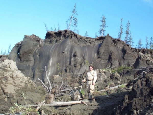 Vladimir Romanovsky in front of huge ice wedges in permafrost on an arctic riverbank. Photo: Sergey Davydov