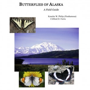 """From the cover of """"Butterflies of Alaska: A Field Guide"""" by Kenelm W. Philip and Clifford D. Ferris. UAF photo."""