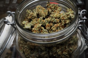 Marijuana for sale at a dispensary in California. (Photo: Dank Depot via Flickr Creative Commons)