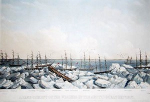 Stranded whaling fleet, miraculous survival story make archaeological jackpot