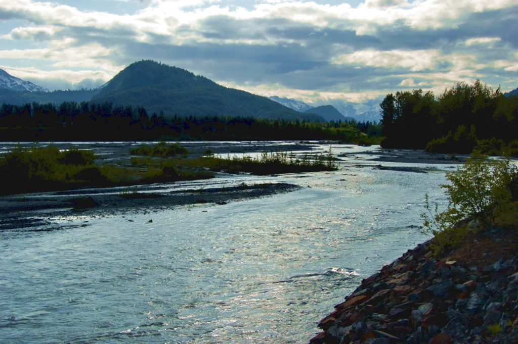 The Chilkat River in 2009. (Photo courtesy of Dave Bezaire/Flickr Creative Commons)