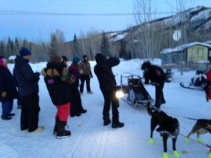 Sass leads Yukon Quest mushers into Dawson
