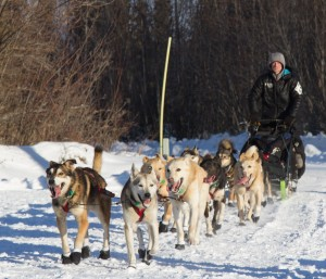 Dallas Seavey, pictured here in Galena, is racing his father Mitch for the Iditarod title. (Photo by Zach Hughes/KSKA)