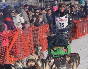 Jan Steves, pictured here at the Sunday race start, scratched from Iditarod 44 after reportedly crashing. Photo by Ben Matheson / Alaska Public Media.