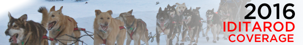 Iditarod Post Banner shorte