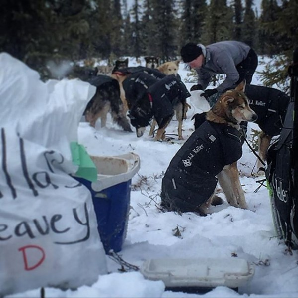 Dallas Seavey first into Cripple. He's planning to sleep for 8 hours and give his dogs 24 of downtime. (Photo by Emily Schwing/KNOM)