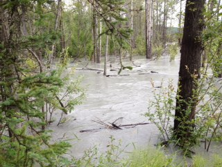 Matanuska river flooding its banks in 2015 (Photo by Ellen Lockyer)
