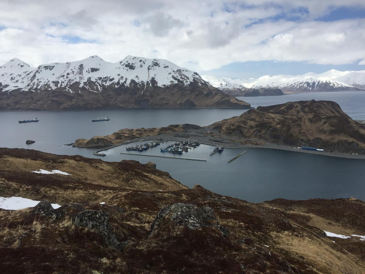 The body of fisherman Matt Warn was found in the Carl E. Moses boat harbor, shown here from a Pyramid Mountain trail. (Photo courtesy of Vic Fisher)