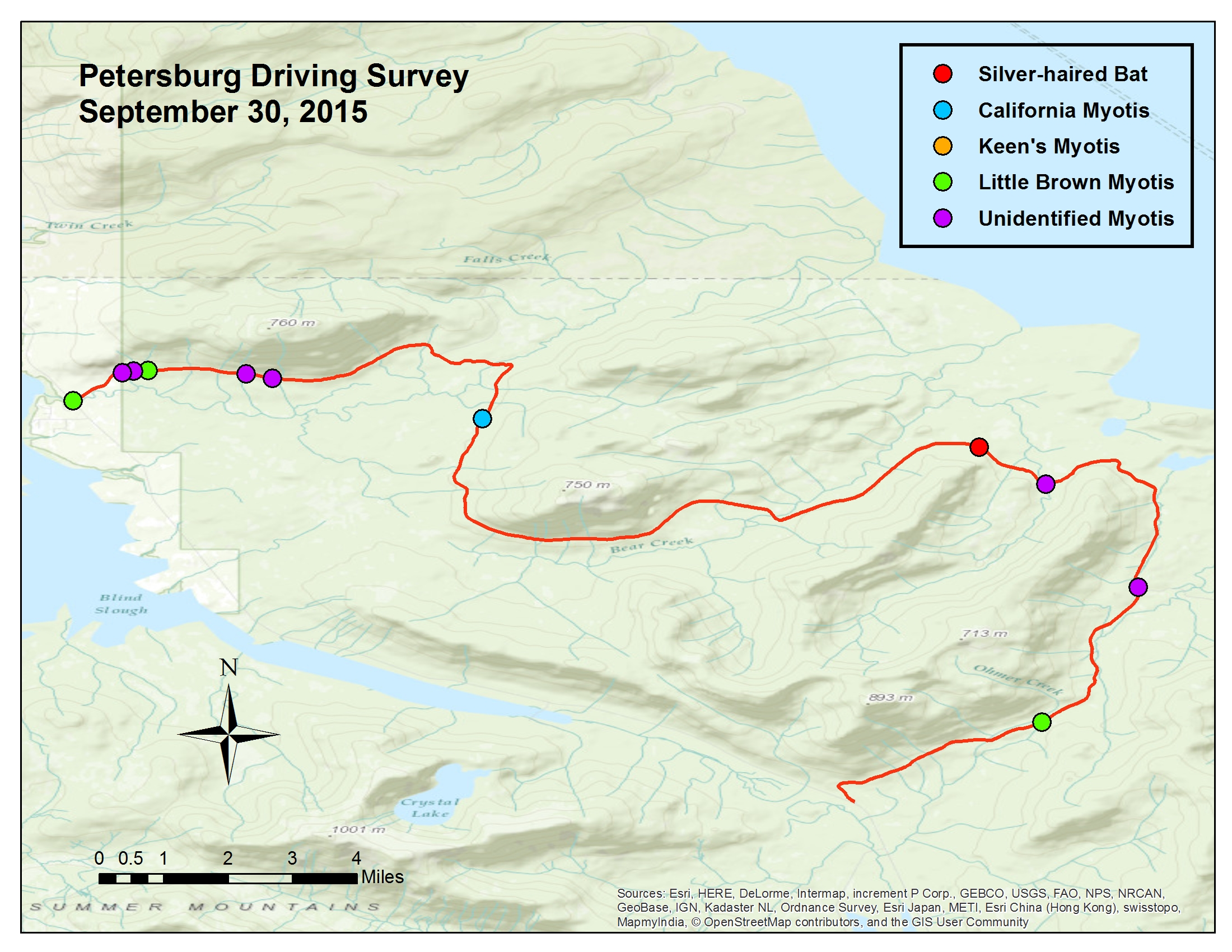 This graph shows the bat species detected near Petersburg in a survey done Sept. 30, 2015. (Image courtesy of Steve Lewis)
